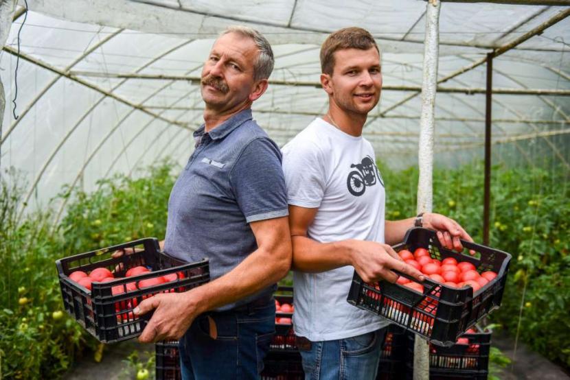 ogrodnictwoztradycjami - warzywa z dostawą do domu Poznań