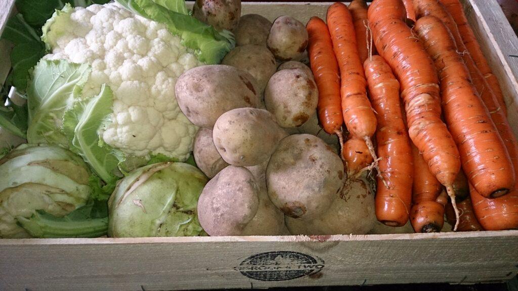 Jak sprawić, by warzywa były dłużej świeże? Odpowiednio je przechowywać!